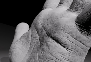 Extremely High Resolution Hand Scan